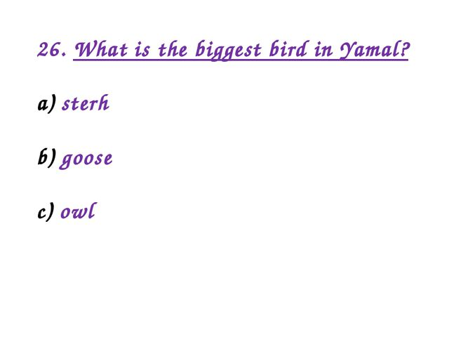 26. What is the biggest bird in Yamal? sterh goose owl