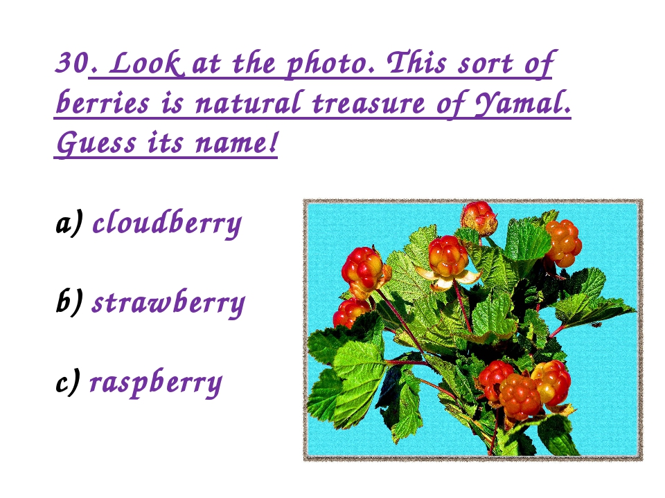 30. Look at the photo. This sort of berries is natural treasure of Yamal. Gue...