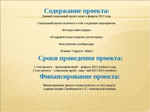Содержание проекта: Данный социальный проект начат в феврале 2013 года. Соци