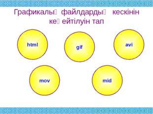 Графикалық файлдардың кескінін кеңейтілуін тап html avi mov mid gif