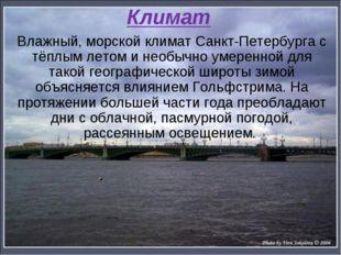 Климат Влажный, морской климат Санкт-Петербурга с тёплым летом и необычно уме