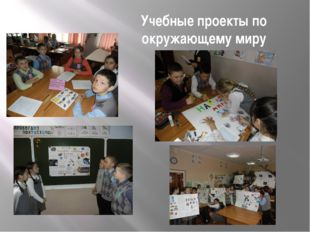 Учебные проекты по окружающему миру