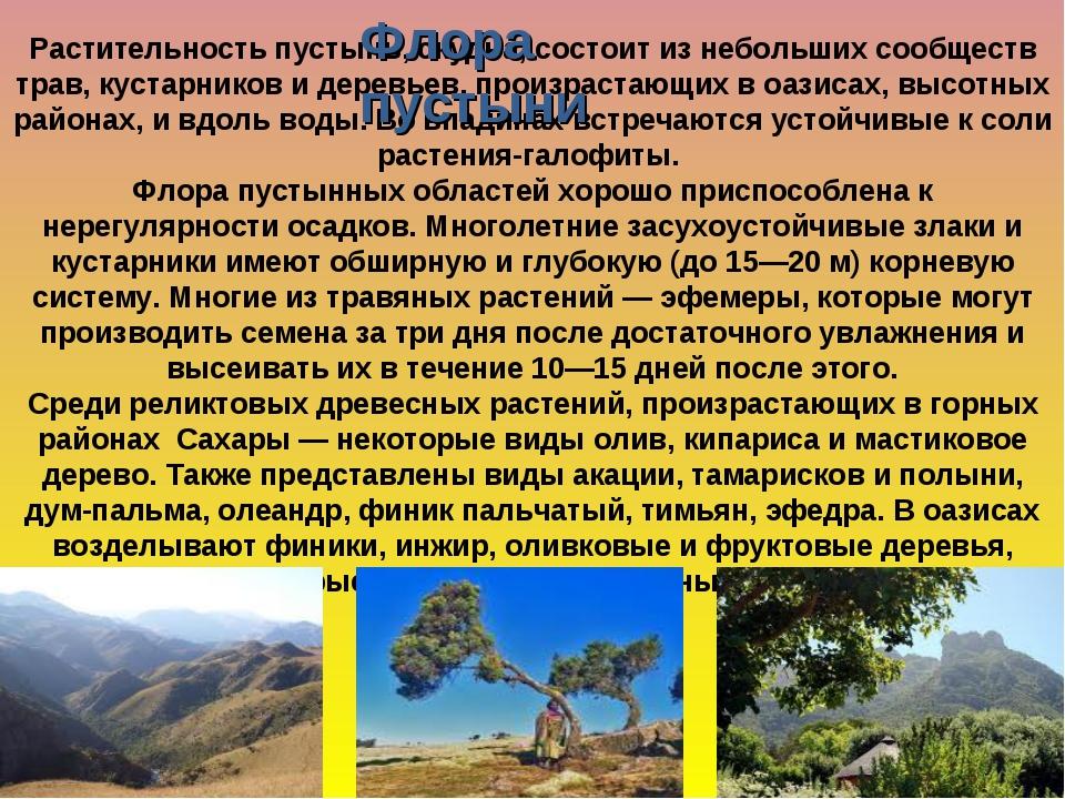 Растительность пустынь, скудна, состоит из небольших сообществ трав, кустарни...