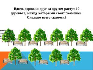 Вдоль дорожки друг за другом растут 10 деревьев, между которыми стоят скамейк