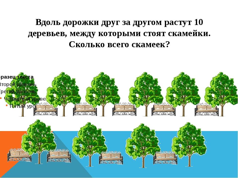 Вдоль дорожки друг за другом растут 10 деревьев, между которыми стоят скамейк...