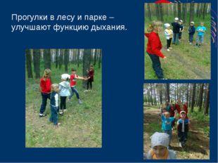 Прогулки в лесу и парке – улучшают функцию дыхания.