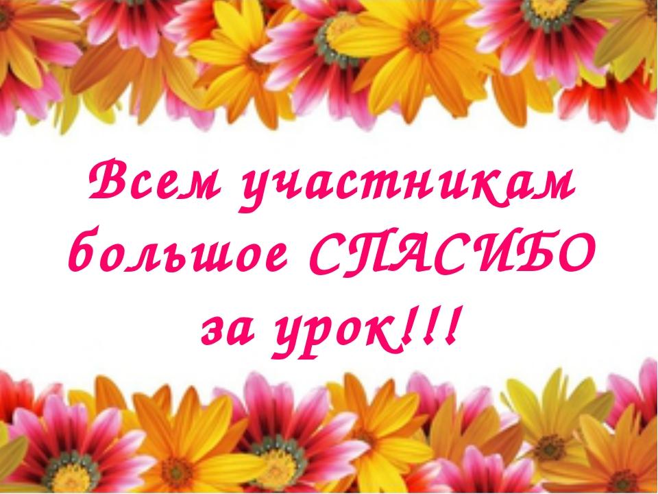 Всем участникам большое СПАСИБО за урок!!!