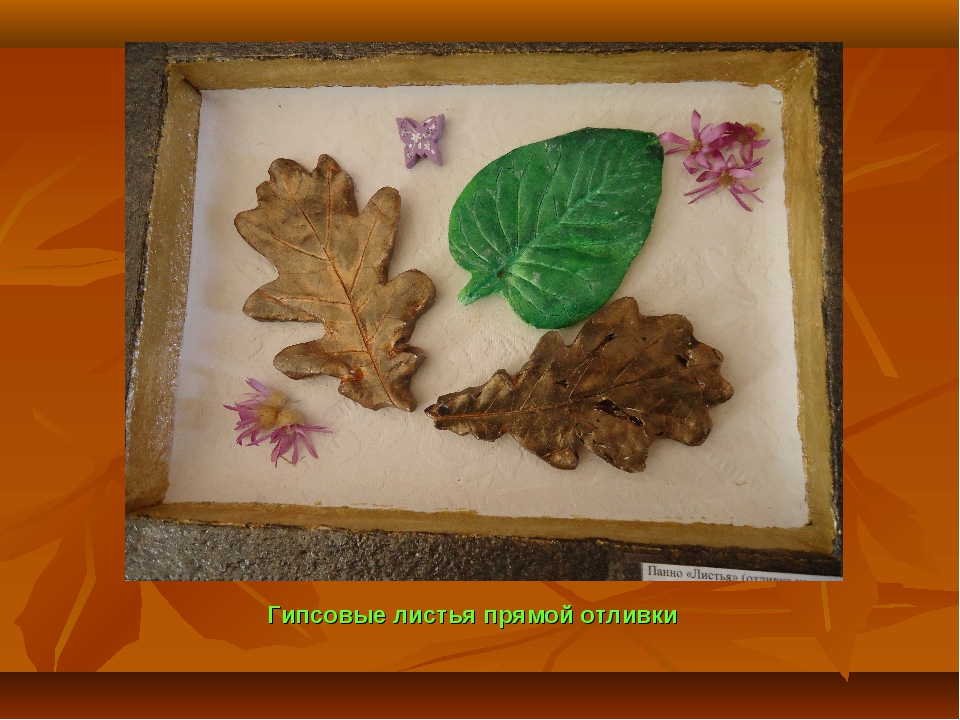 Гипсовые листья прямой отливки
