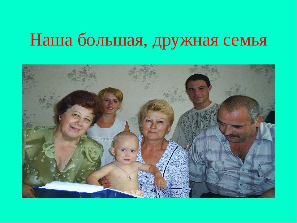Наша большая, дружная семья