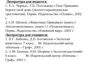 Литература для педагога: 1. Е.А. Черных, Т.В. Похожаева «Твое Прикамье. Бере