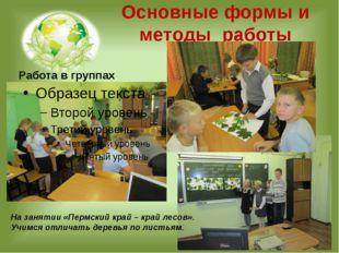 Основные формы и методы работы Работа в группах На занятии «Пермский край – к
