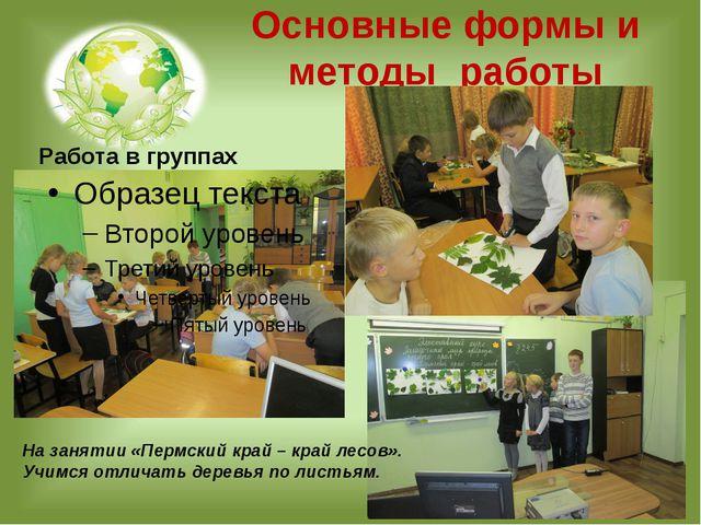 Основные формы и методы работы Работа в группах На занятии «Пермский край – к...