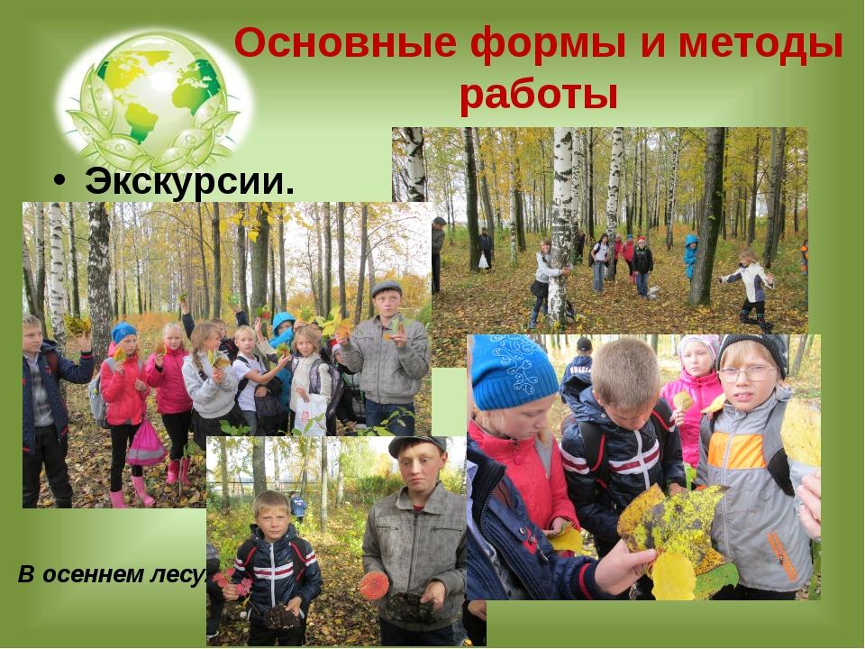 Основные формы и методы работы Экскурсии. В осеннем лесу.