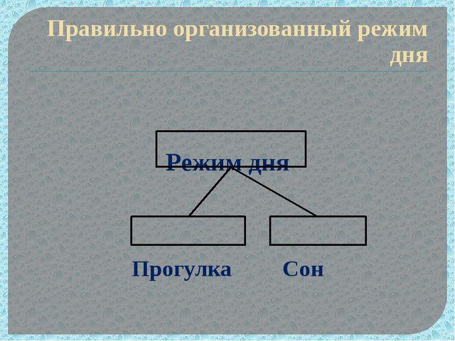 Правильно организованный режим дня Режим дня Прогулка Сон