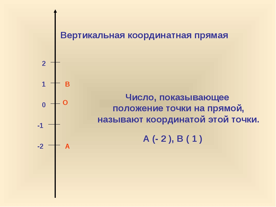 О 0 1 2 -1 -2 Вертикальная координатная прямая Число, показывающее положение...
