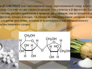 Сахароза(C12H22O11) илисвекловичный сахар,тростниковый сахар, в быту прост