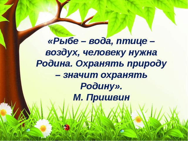 «Рыбе – вода, птице – воздух, человеку нужна Родина. Охранять природу – значи...