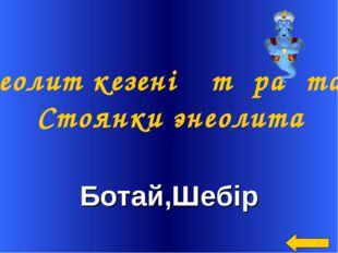 Ботай,Шебір Энеолит кезенің тұрақтары Стоянки энеолита
