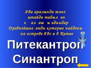 Питекантроп Синантроп Ява аралында және Қытайда табылған ең алғашқы адамдар Д