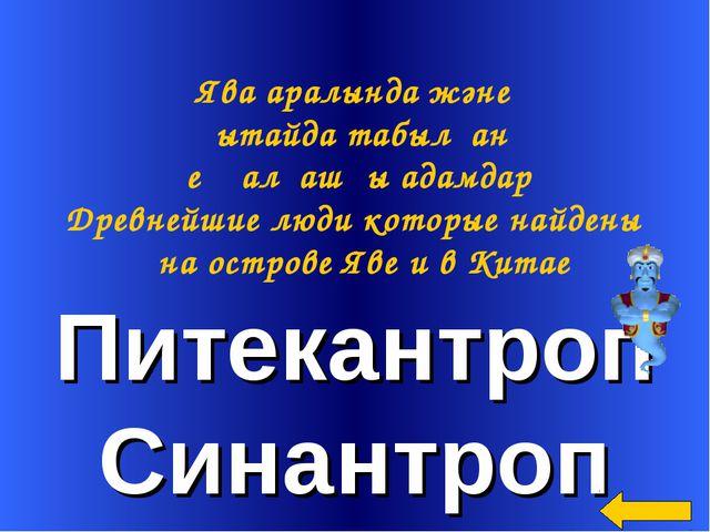 Питекантроп Синантроп Ява аралында және Қытайда табылған ең алғашқы адамдар Д...