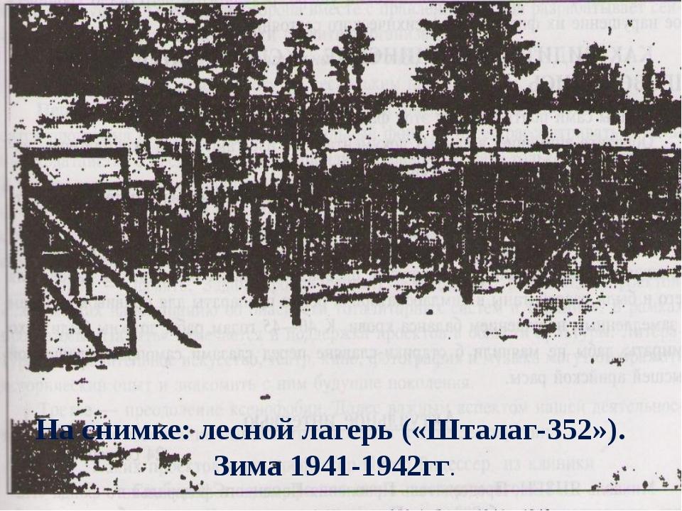 На снимке: лесной лагерь («Шталаг-352»). Зима 1941-1942гг.