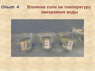 Опыт 4 Влияние соли на температуру замерзания воды