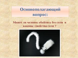 Может ли человек обойтись без соли и каковы свойства соли ? Основополагающий