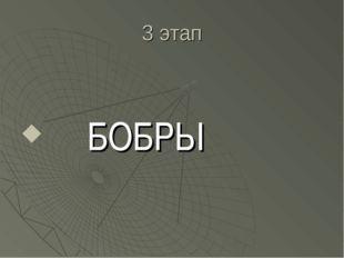3 этап БОБРЫ