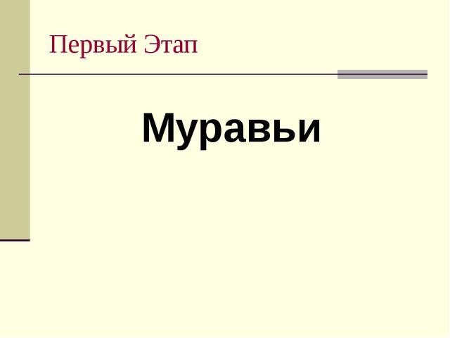 Первый Этап Муравьи