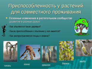 Приспособленность у растений для совместного проживания Сезонные изменения в