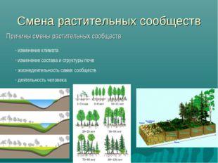 Смена растительных сообществ Причины смены растительных сообществ: изменение