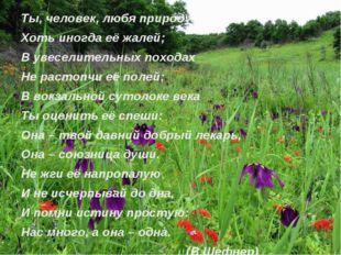 Ты, человек, любя природу, Хоть иногда её жалей; В увеселительных походах Не