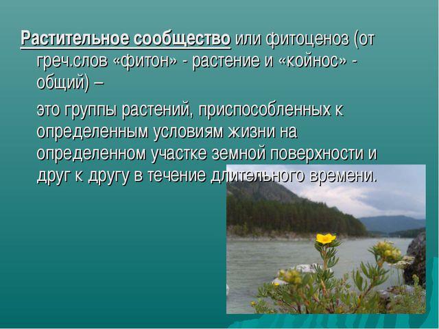 Растительное сообщество или фитоценоз (от греч.слов «фитон» - растение и «кой...