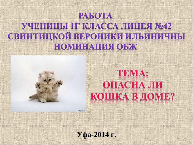 Уфа-2014 г.