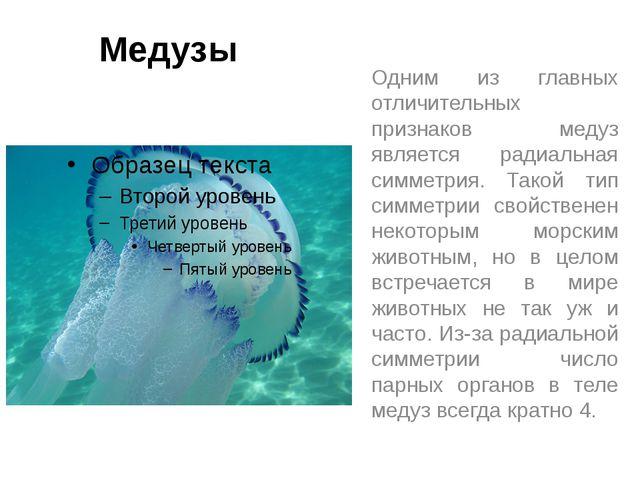 Медузы Одним из главных отличительных признаков медуз является радиальная сим...