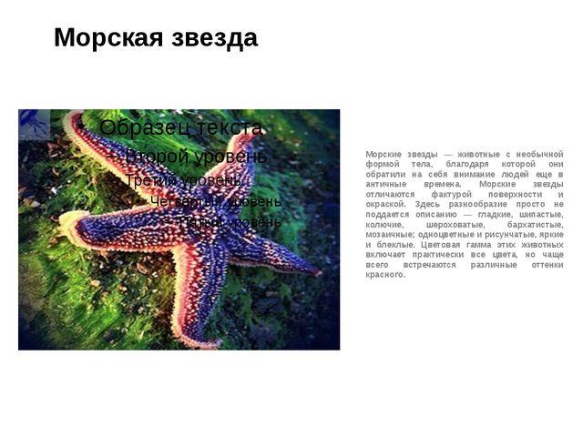 Морская звезда Морские звезды — животные с необычной формой тела, благодаря к...