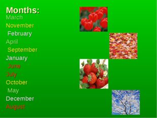 Months: March November February April September January June July October May