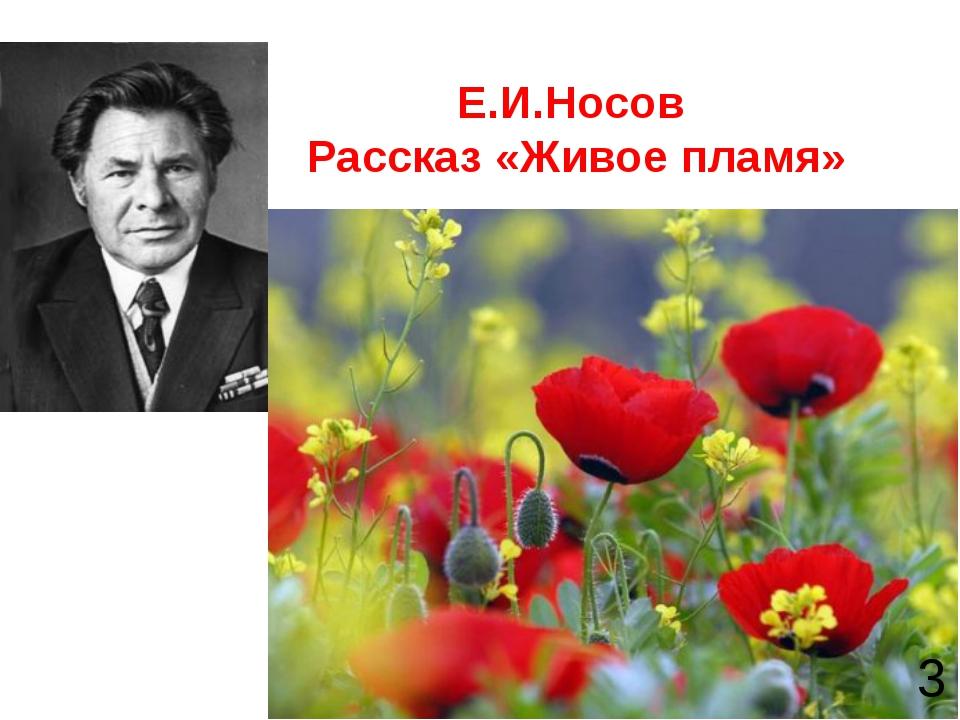 Е.И.Носов Рассказ «Живое пламя» 3