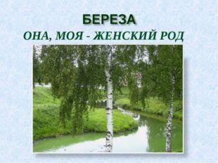 ОНА, МОЯ - ЖЕНСКИЙ РОД