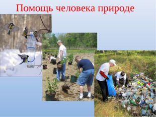 Помощь человека природе
