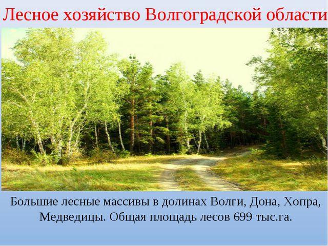 Лесное хозяйство Волгоградской области Большие лесные массивы в долинах Волги...