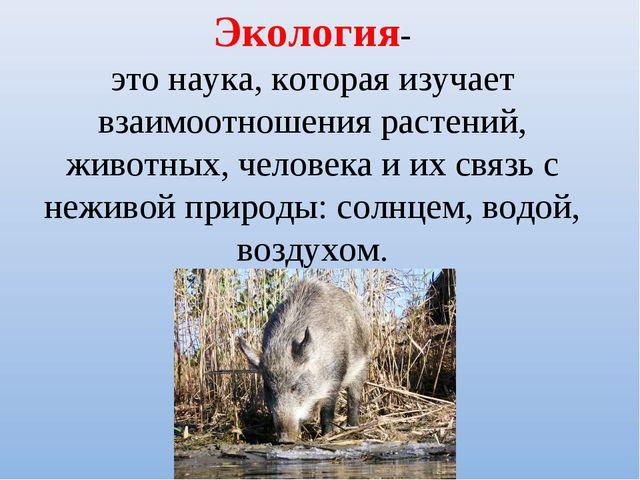 Экология- это наука, которая изучает взаимоотношения растений, животных, чело...