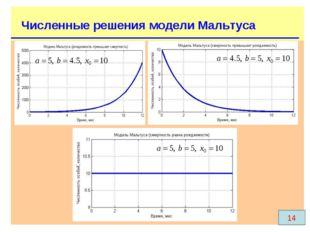 Численные решения модели Мальтуса 14