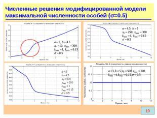 Численные решения модифицированной модели максимальной численности особей (σ=
