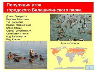 Популяция уток городского Балашихинского парка Домен: Эукариоты Царство: Живо