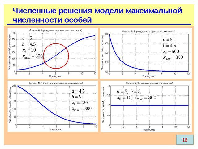 Численные решения модели максимальной численности особей 16