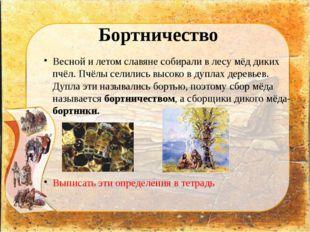 Бортничество Весной и летом славяне собирали в лесу мёд диких пчёл. Пчёлы сел