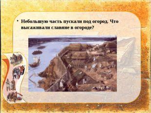 Небольшую часть пускали под огород. Что высаживали славяне в огороде?