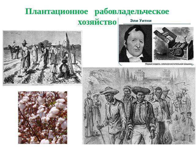 Плантационное рабовладельческое хозяйство