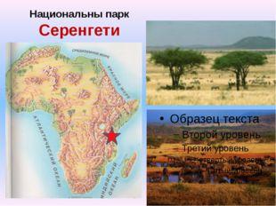 Национальны парк Серенгети